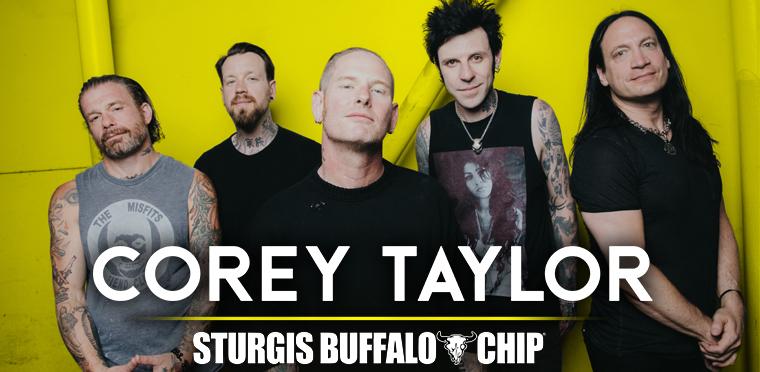 buffalo chip